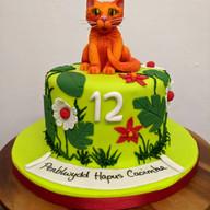 Warrier cat cake