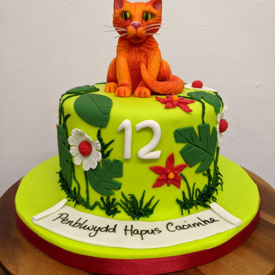 Warrier cat cake