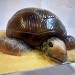 3D turtle cake