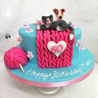 Pets & knitting cake