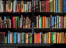 An image of multicolored books on a shelf. Image by Lubos Houska.