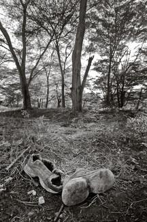 KevinKubota-032.jpg
