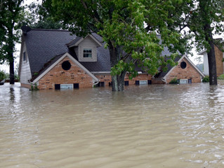 PUBLIC POLICY AFTER HURRICANE HARVEY