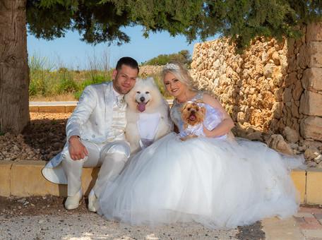 fairy tale wedding