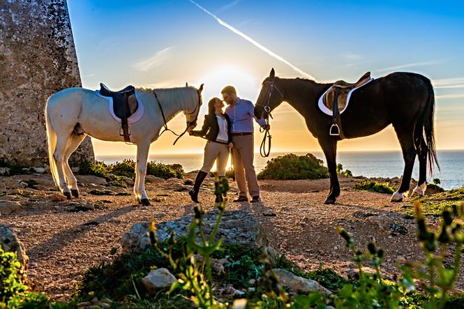sunset horses