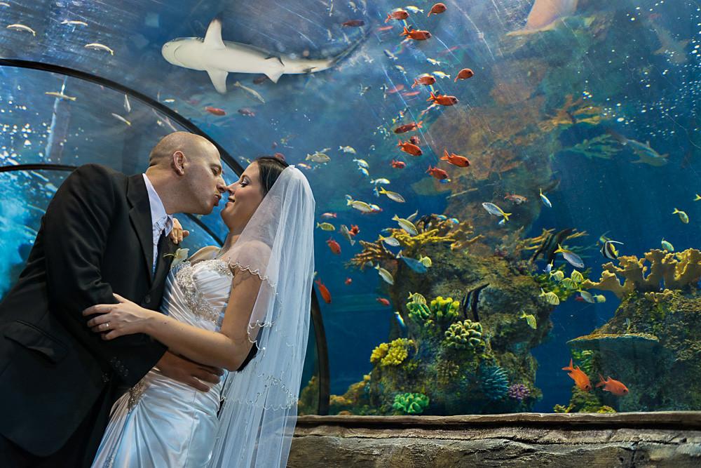 Aquarium Malta