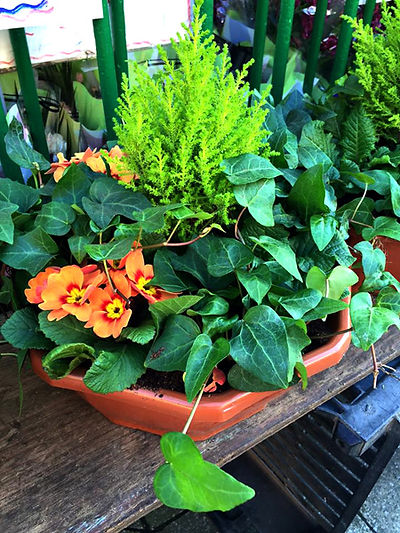 Flower and greenery display in earthenware container
