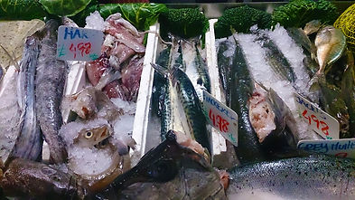 Fresh mackerel and other fish