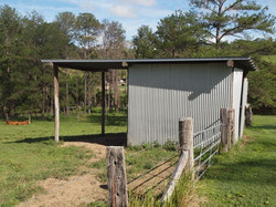 Farm shed and animal shelter