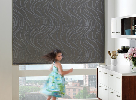 Which Window Shades are right for your home and why?
