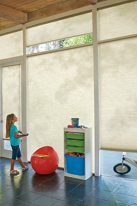Hunter Douglas Powerview Cellular Shades