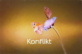 image-1635747_1280_edited.jpg