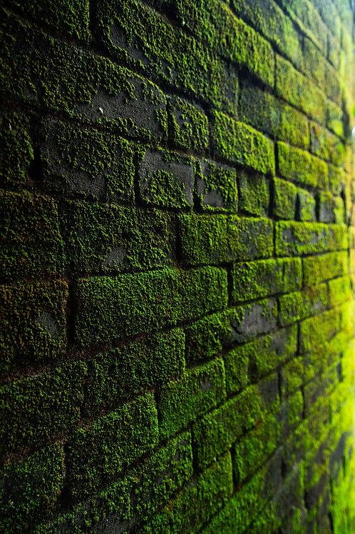 Bricks Max/MSP patch (by Davide Martiello)