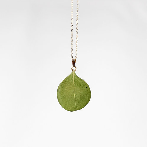 Silver Dollar Eucalyptus Leaf Necklace