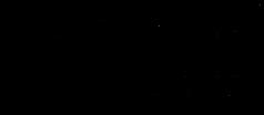 IB_logo_1.png