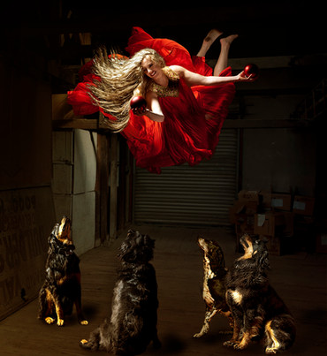 Dog Fairy