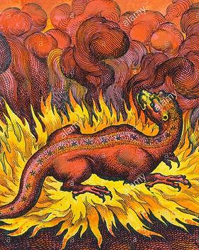 symbols-salamander-sulphur-alchemy-engra