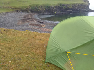 Wild camping with a whale