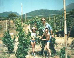 Family in Vineyard.jpg
