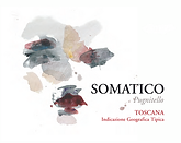 Somatico NV.png