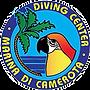 DivingCamerota.png