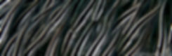 21052019-467 (Copy).jpg