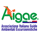 AIGAE.png
