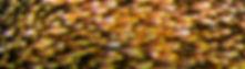 24092018-078 (Copy).jpg