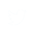 icons twitter white.png
