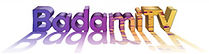 BadamiTV1Logo2021Small