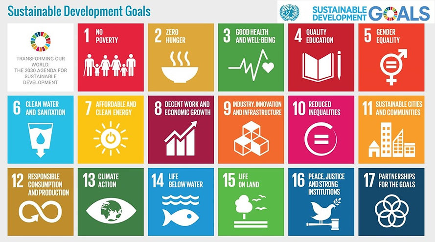 UN Sustainable Development Goal