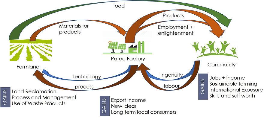 Pateo Process Flow