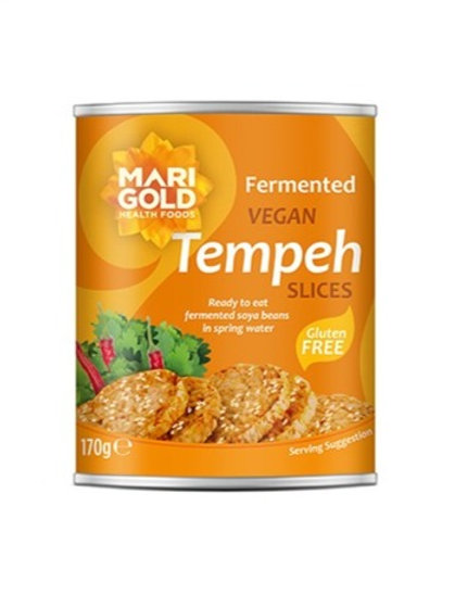 Tempeh Slices