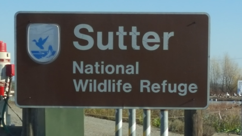 Sutter NWR
