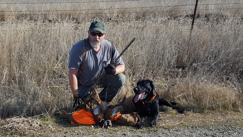 Upland Game Bird Hunting in California: General Information