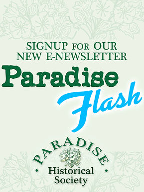 PHS Email Header Flash LG.jpg
