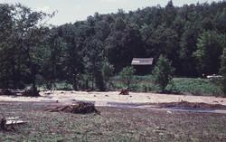 Flood of 1955