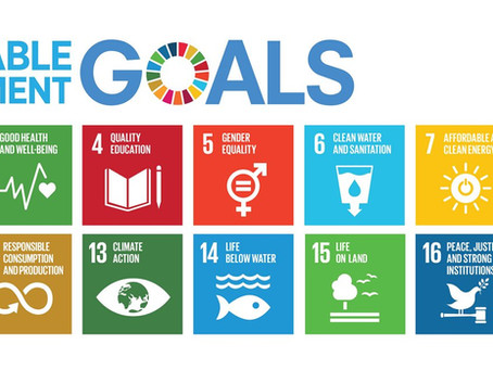 How businesses can align their strategy to sustainable development goals