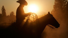 Saddle up and experience the west the way it's meant to be seen - on horseback! The Sonoran Desert offers some of the most scenic riding trails in Arizona within the serenity and natural beauty of the Tonto National Forest.