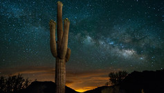 Take a thrilling Jeep or Hummer tour into the pristine Sonoran Desert where a gourmet dinner, served on tables set with fine china, crystal and candlelight, awaits. After dinner, enjoy stargazing with a professional astronomer.