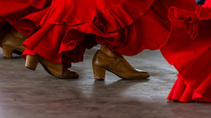 Experience the art and culture of Flamenco with a dance masterclass.