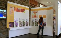 Paneles expositivos