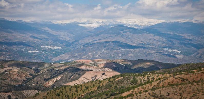 Vista General de la Contraviesa, la Alpujarra y Sierra Ne
