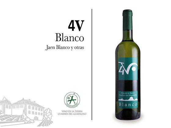 4V - Blanco