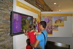 Monitores táctiles e interactivos