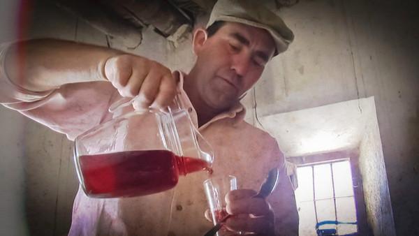 Aún se mantinen en los cortijos las pequeñas produciones de vino para uso particular o de cercanía