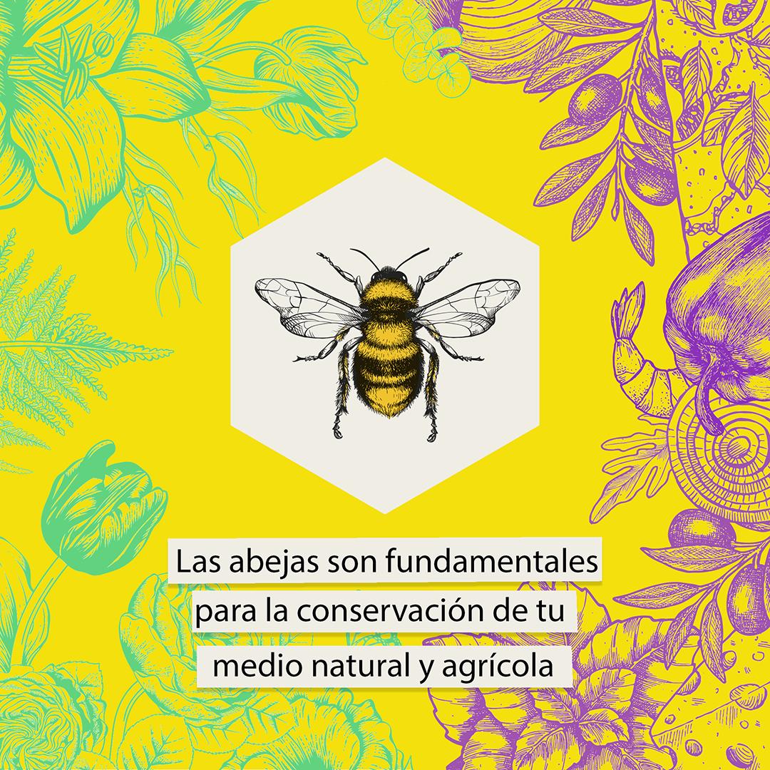 Campaña miel local