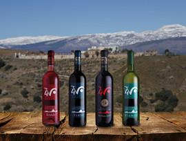 Algunos de nestros vinos