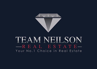 Team Neilson Logo navy JPEG.JPG
