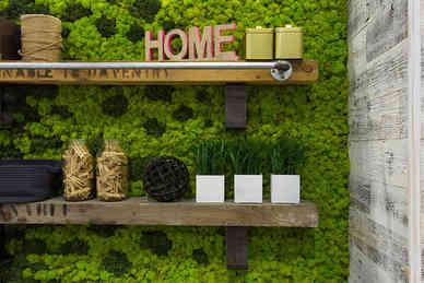 Moss & Home